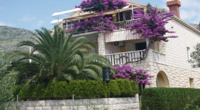 apartmani Villa Dube - Slano + pool