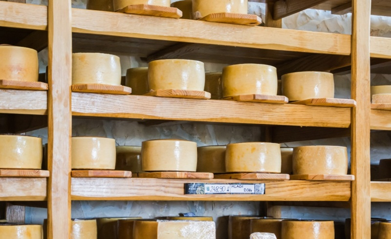 Paški sir zadarska regija suvenir