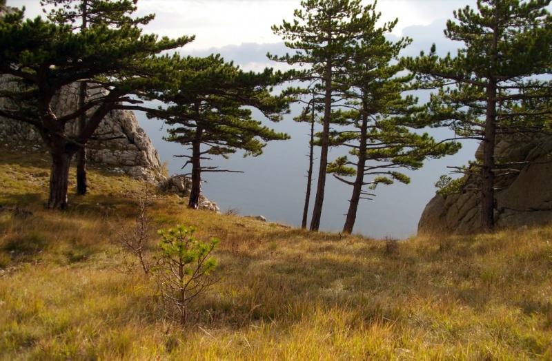 Park prirode Biokovo